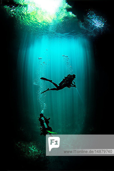 Underwater view of male and female scuba divers exploring cenote called the pit  Tulum  Quintana Roo  Mexico
