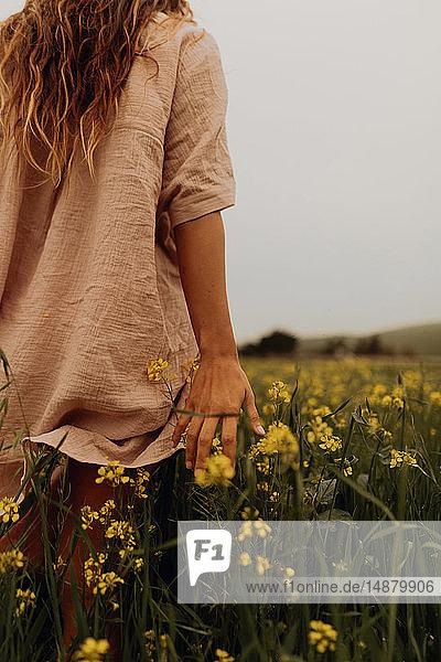 Junge Frau geht im gelben Wildblumenfeld  Rückansicht  Jalama  Kalifornien  USA
