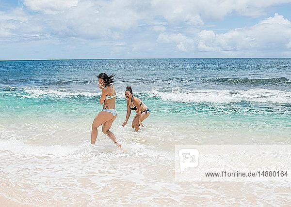 Friends enjoying Sunset Beach  Oahu  Hawaii