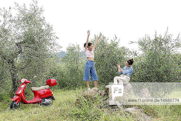 Freunde fotografieren im Olivenhain  Città della Pieve  Umbrien  Italien