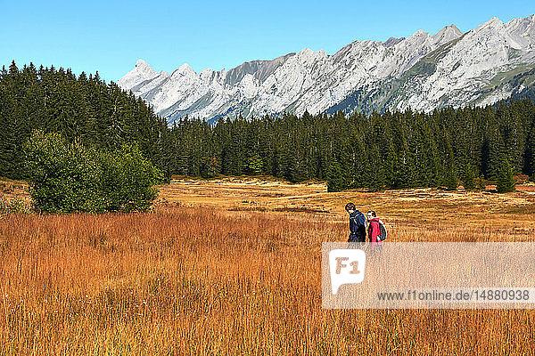 Wanderer auf Grasfeld  Berge im Hintergrund  Manigod  Rhône-Alpes  Frankreich