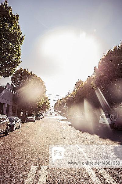 Sonnenlichtansicht einer Vorstadtstraße durch die Windschutzscheibe eines Autos,  Los Angeles,  Kalifornien,  USA