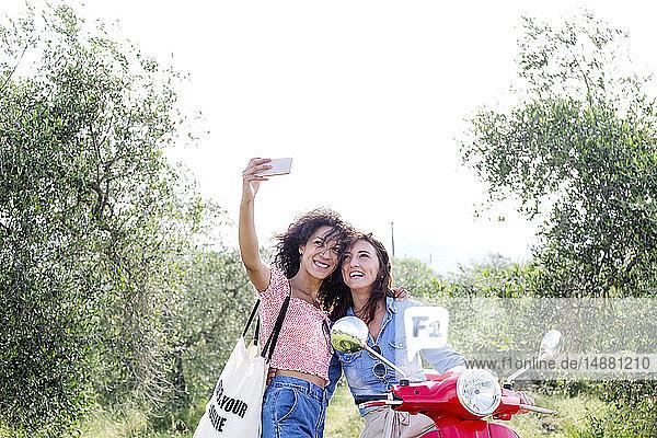 Freunde beim Selbstausbau im Olivenhain  Città della Pieve  Umbrien  Italien