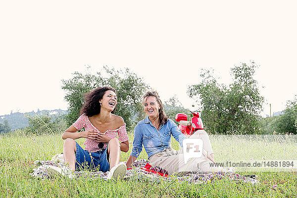 Freunde genießen Picknick