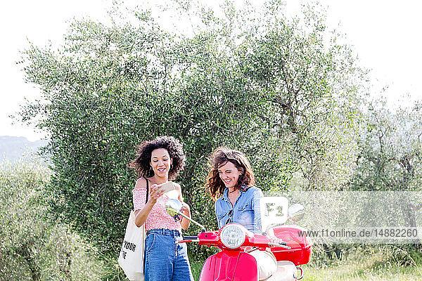 Freunde überprüfen Mobiltelefon im Olivenhain