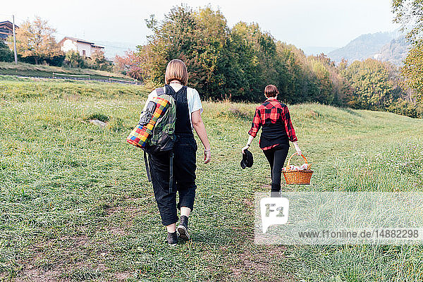 Friends going for picnic  Rezzago  Lombardy  Italy
