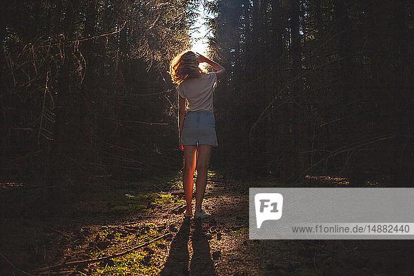 Frau blickt aus dunklem  sonnenbeschienenem Wald auf  Rückansicht