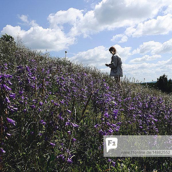 Frau pflückt lila Wildblumen am Hang