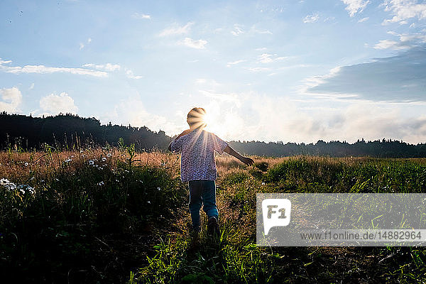 Boy playing in field at sunset  rear view