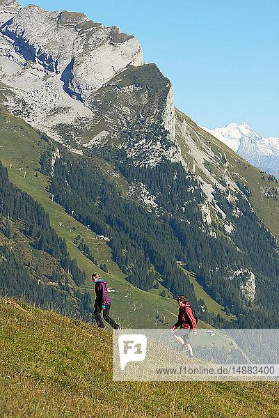 Wanderer beim Bergwandern  Manigod  Rhône-Alpes  Frankreich