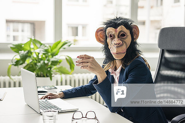 Businesswoman with chimpanzee mask working in office  using laptop