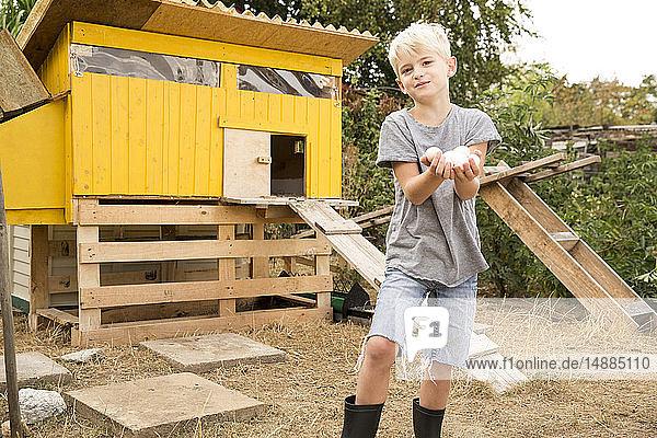 Porträt eines Jungen  der im Hühnerstall im Garten Eier hält