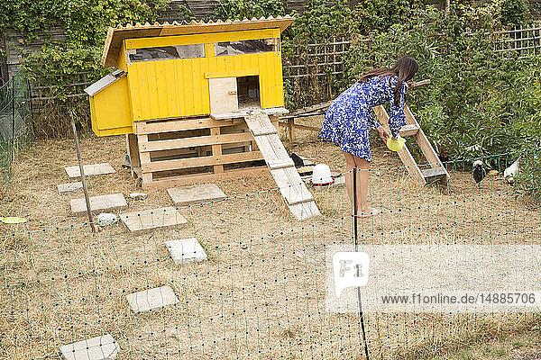 Frau füttert Hühner im Hühnerstall im Garten