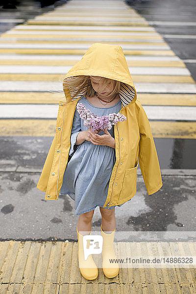 Girl wearing yellow rainjacket  standing on zebra crossing  holding lilac
