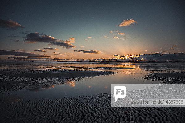 Deutschland  Sylt  Nationalpark Schleswig-Holsteinisches Wattenmeer  List  Ellenbogen  Sonnenuntergang Abendlicht