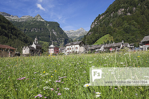 Switzerland  Ticino  Sonogno village  alpine meadow
