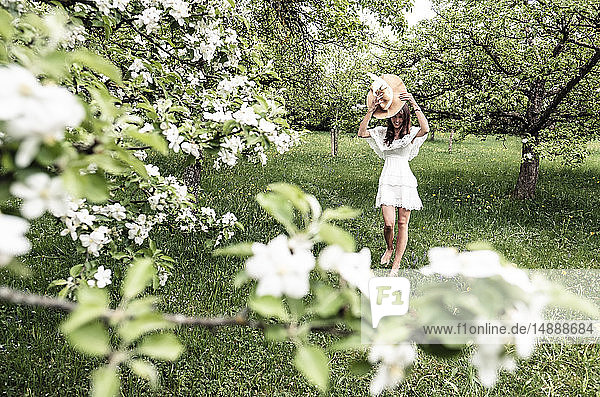 Young woman wearing white dress and floppy hat walking barefoot in garden with blossoming apple trees