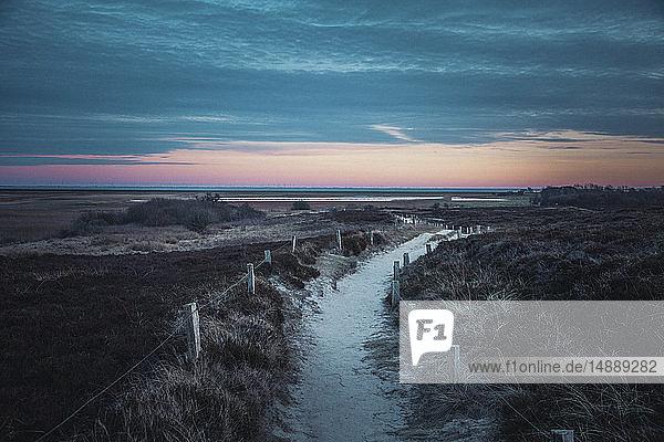 Deutschland  Sylt  Nationalpark Schleswig-Holsteinisches Wattenmeer  Morsum Kliff  Dünenlandschaft  Pfad  Abendlicht