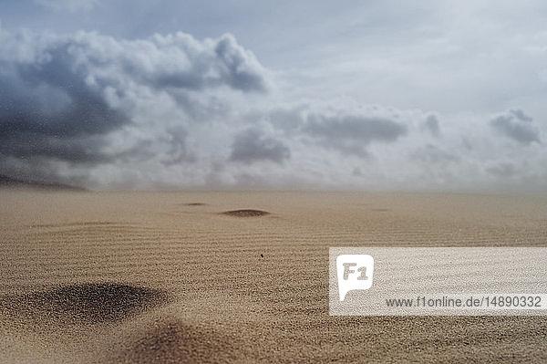 Spain  Tarifa  cloudy sky over sand dune