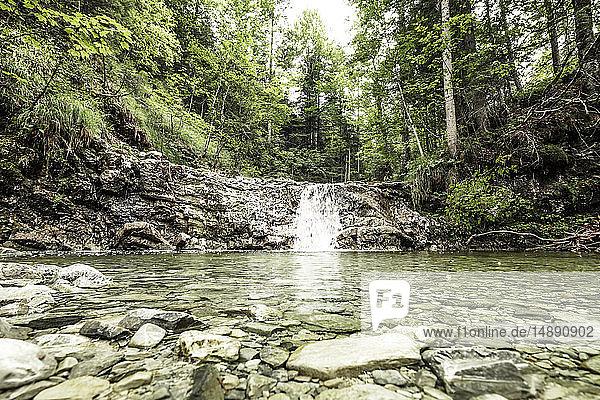 Germany,  Upper Bavaria,  Bavarian Prealps,  lake Walchen,  waterfall in a torrent
