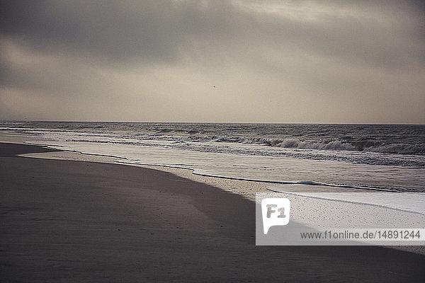 Deutschland  Sylt  Kampen  einsamer Strand  Meer  Winter
