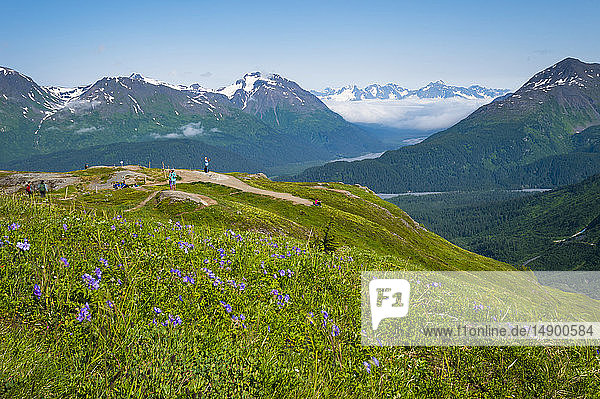 Tourists at the Top of the Cliffs lookout at Exit Glacier in Kenai Fjords National Park  South-central Alaska on a sunny  summer day; Alaska  United States of America