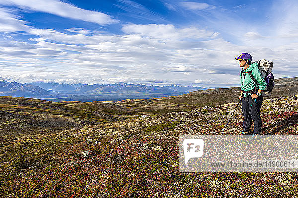 Woman taking in the view  backpacking on the Kesugi Ridge Trail  Denali State Park  in the autumn with the Alaska Range in the background  South-central Alaska; Alaska  United States of America