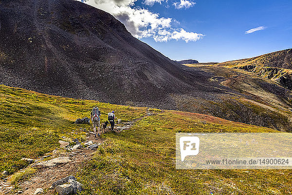 Man and woman backpacking with dog on the autumn coloured tundra  Kesugi Ridge Trail  Denali State Park  Southcentral Alaska; Alaska  United States of America