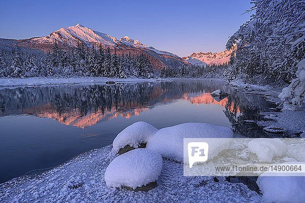 Winter afternoon along the shoreline of Mendenhall River  Tongass National Forest; Juneau  Alaska  United States of America
