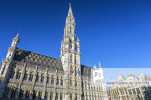 Town Hall of the city of Brussels  a large  decorative building in city square with gold trim and blue sky; Brussels  Belgium