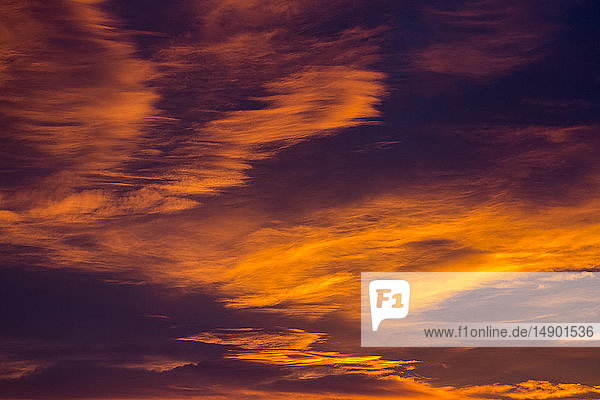 Dramatic glowing clouds in fiery orange at sunset; Calgary  Alberta  Canada