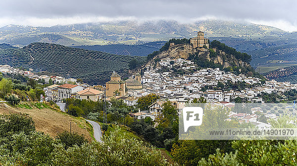 Ruins of a Moorish castle on a hilltop with houses filling the hillside and olive groves in the rolling hills; Montefrio  Province of Granada  Spain