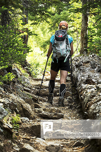 Female hiker assending up a rocky pathway in the forest; British Columbia  Canada