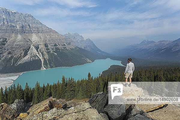A man stands on a rock ridge overlooking the stunning turquoise water of Peyto Lake in Banff National Park; Alberta  Canada