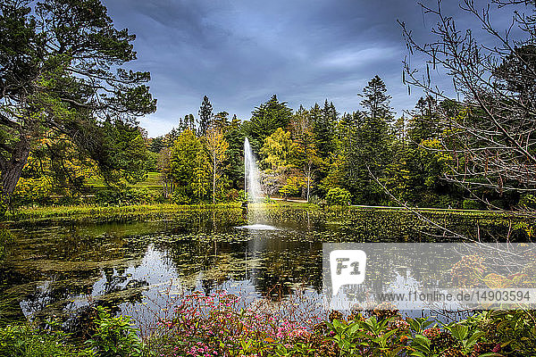 A fountain in a pond surround by blossoming plants and trees  Powerscourt Estate; Enniskerry  County Wicklow  Ireland