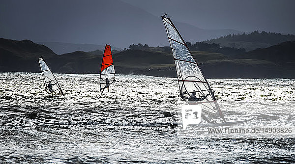 Windsurfing along the coast of Ireland; Downings  County Donegal  Ireland