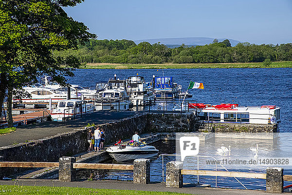 Boats at the waterfront with swans  Lough Key Forest Park; County Roscommon  Ireland