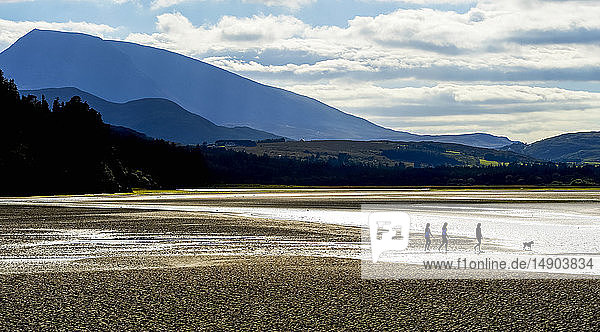 People with a dog walking along a pebble beach  Ards Forest Park and Muckish Mountain; County Donegal  Ireland