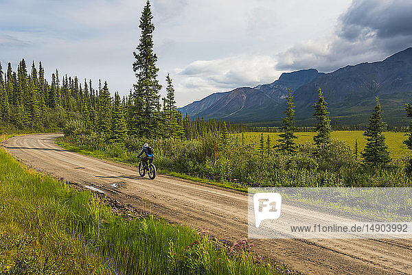 A man fat biking on the Nabesna Road in Wrangell-St. Elias National Park and Preserve on a cloudy summer day in South-central Alaska; Alaska  United States of America