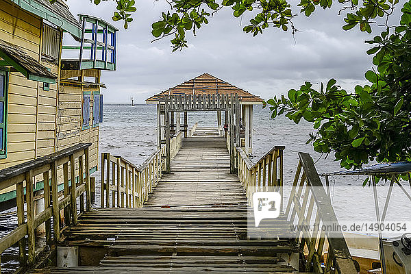 Wooden dock leading down to the water  Coxen Hole  Community of Gravel Bay; Roatan  Bay Islands Department  Honduras