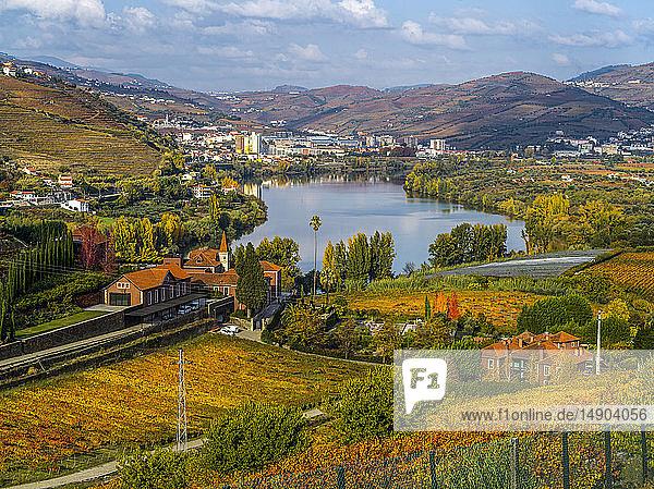 Autumn coloured foliage surrounding Douro River  Douro Valley; Portugal