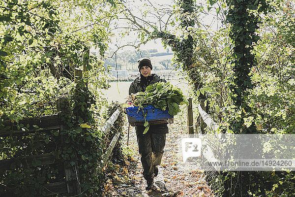 Frau geht auf die Kamera zu und trägt eine blaue Kiste mit frisch geerntetem Gemüse.
