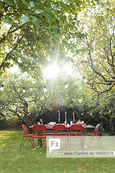 Sun shining over trees and garden party table in backyard Sun shining over trees and garden party table in backyard