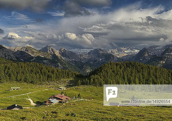 Gotzenalm bei Berchtesgaden  Bayern  BRD