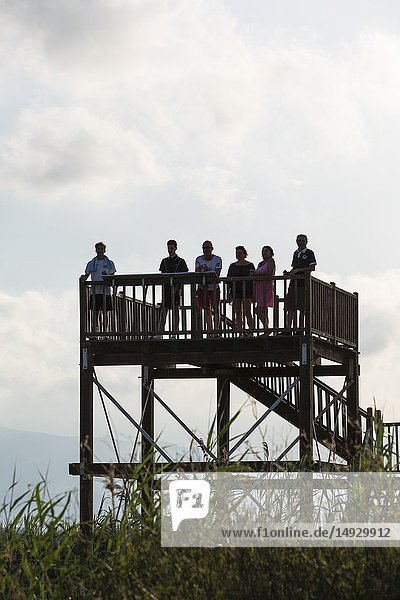 Visitors at a viewing platform in the evening. Ebro Delta Nature Reserve  Tarragona province  Catalonia  Spain.