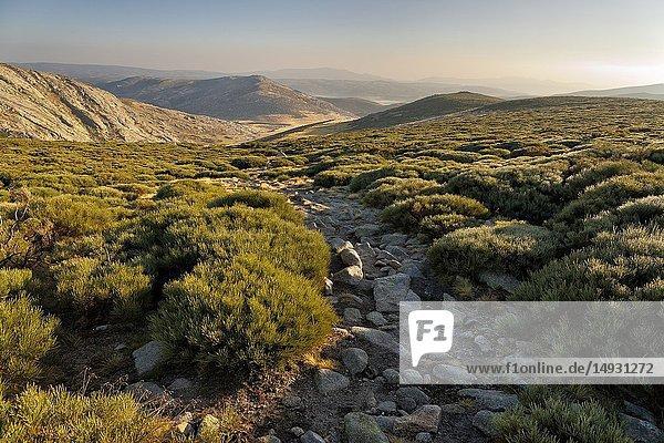 Sunrisse in Prado Puerto and path of the refuge of the King. Sierra de Gredos. Avila. Spain