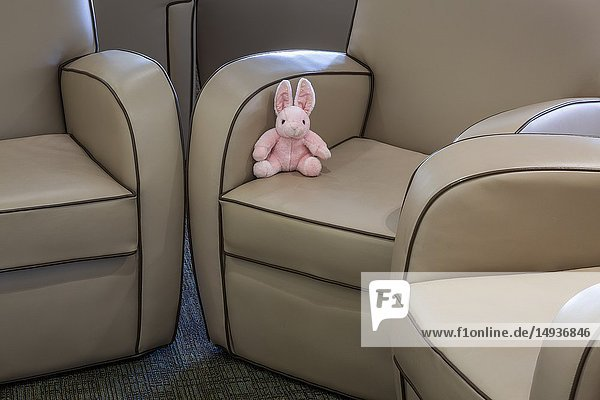 Stuffed bunny rabbit sitting on a chair.