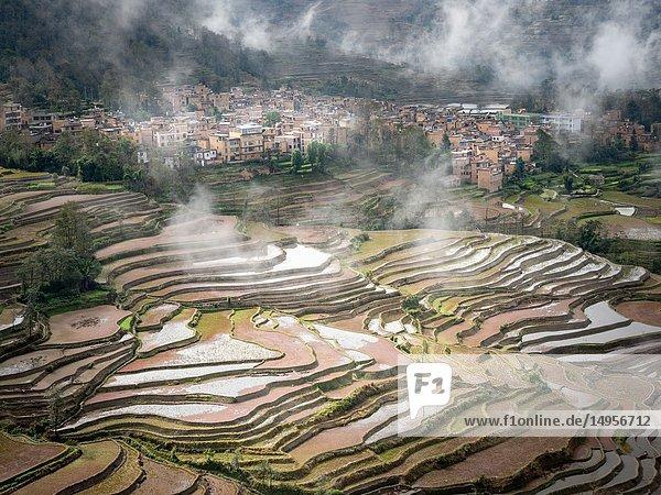 China Yuanyang Area.