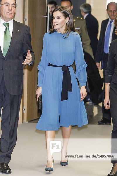 Queen Letizia of Spain attends the elivery of the 'Grants for Master's and Research Aid' of the Fundación Iberdrola 2018 at Iberdrola Offices on January 31  2019 in Madrid  Spain