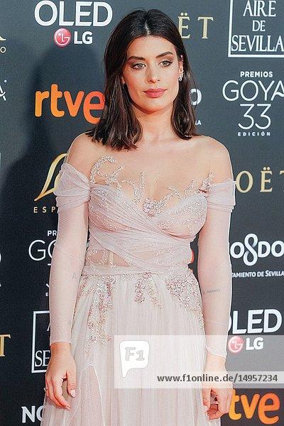 Dulceida attends the Spanish Cinema awards Goya 33rd edition at FIBE attends 33rd Goya Cinema Awards 2019 at Palacio de Congresos y Exposiciones FIBES on February 3  2019 in Sevilla  Spain.02/02/2019.